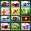 Animal Memory Deluxe spielen!