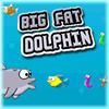 BIG FAT DOLPHIN spielen!