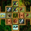 Bird Cards Match spielen!